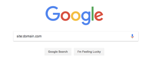 Site search with Google